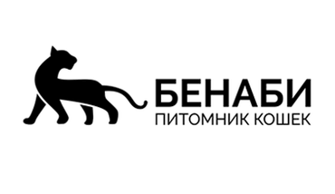 Логотип Benaby