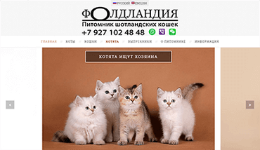 Сайт питомника Фолдландия